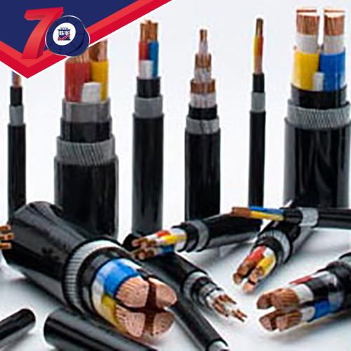 0.6/1kV及以下聚氯乙烯绝缘及护套电力电缆